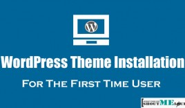 How To Install WordPress Theme For The First Time User