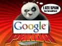 Thumbnail image for Google Panda Attack on Japan & Korea