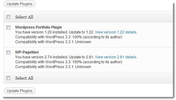 Keep WordPress Plugin Updated