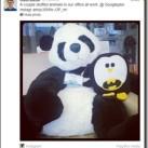 Google Penguin Update : Fight Against Web Spam