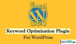 EasyWPSEO Plugin : Keyword Optimization Plugin for WordPress