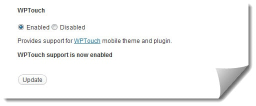 Wptouch support is Enabled