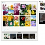 WordPress photo gallery plugins 150x150