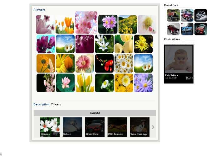 WordPress photo gallery plugins