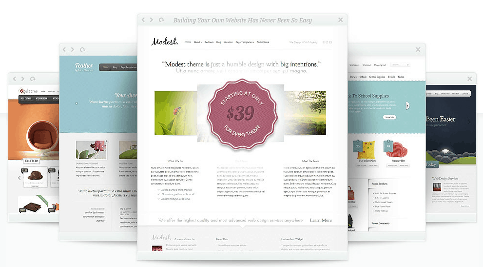 elegant theme review Elegant Theme Review: Most Affordable WordPress Theme Club