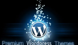 Do You Have to Hire a WordPress Developer?