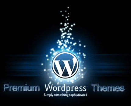 premium wordpress templates picture1 Do You Have to Hire a WordPress Developer?