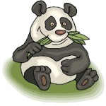 Google Panda 20th Update : 2.4% English Search Impacted