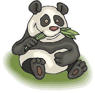 Google Panda 20 Google Panda 20th Update : 2.4% English Search Impacted