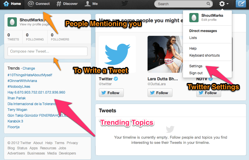 Twitter Explained How to Create a Twitter Account for Dummies