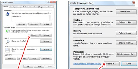 deleting browsing history from IE