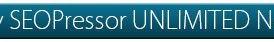 SEOPressor Review : Must have SEO Checklist WordPress plugin