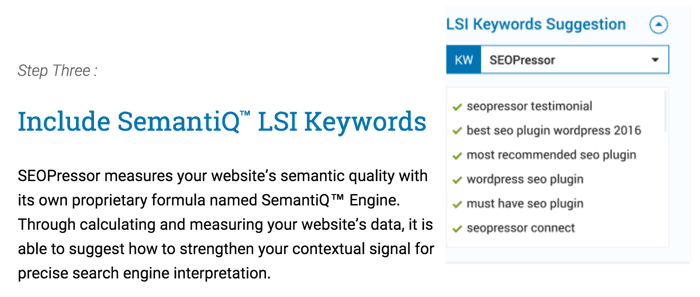 LSI Keyword Suggestions