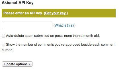 How To Get Free Akismet API Key For WordPress Blog