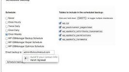 How to Automate WordPress Database Backup