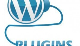 Things to Look Before Buying Premium WordPress Plugins
