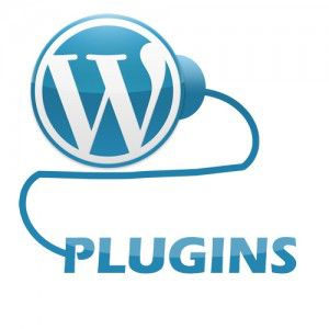 Premium WordPress plugins Things to Look Before Buying Premium WordPress Plugins