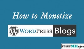 How to Monetize WordPress Blogs (Self Hosted only)