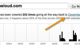 Domain Age Checker: Find How Old is a Website
