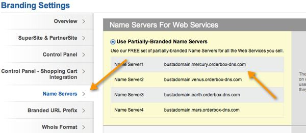 Name server settings How to Start your Domain And Webhosting Company
