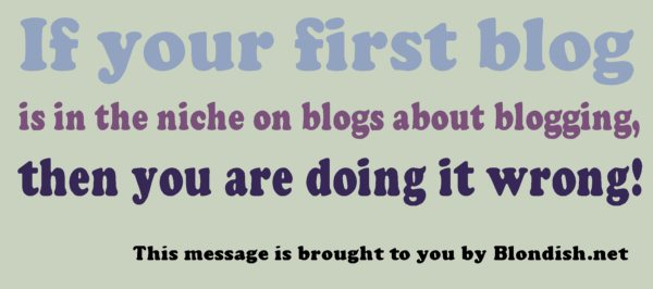 "Why New Blogger Should not Blog On ""Blogging Niche"""