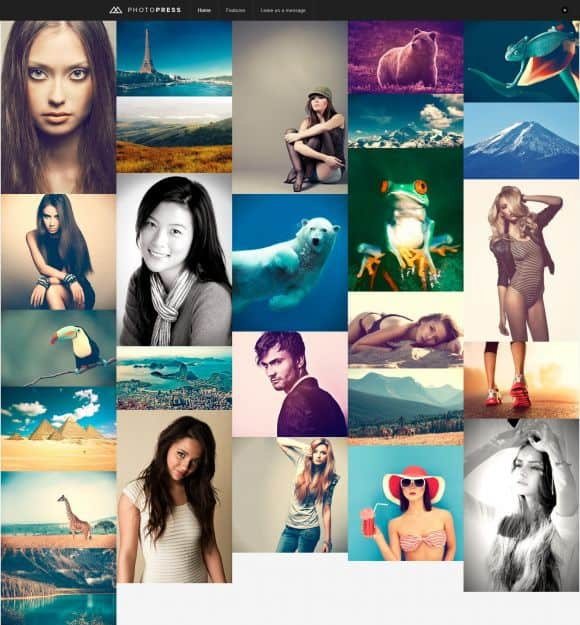 timthumb 10 Portfolio WordPress Themes for Photographers