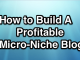 How I Built A Micro-Niche Site And Earning $174/Month From AdSense