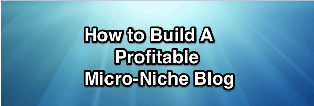 Niche blog ideas