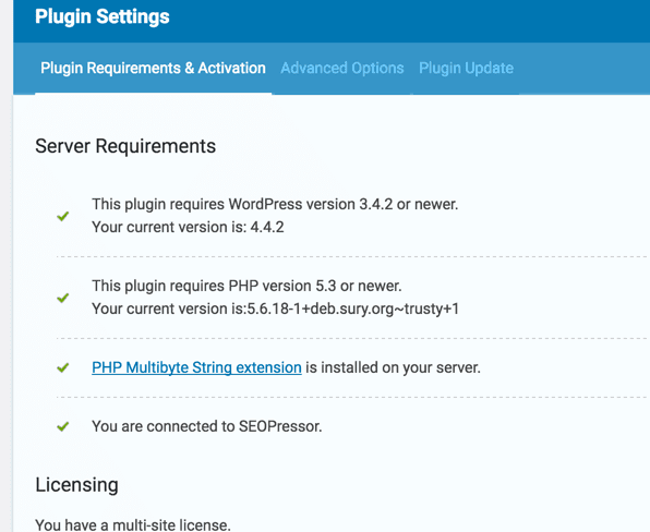 Activated SEOPressor WordPress Plugin
