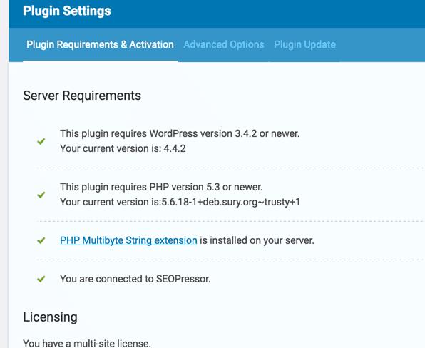 Activated SEOPressor WordPress Plugin