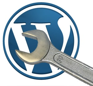 disable WordPress automatic update