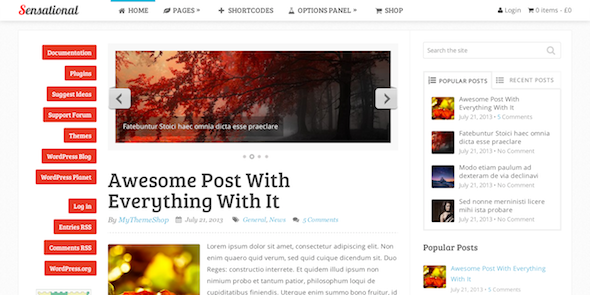 sensational wodpress theme