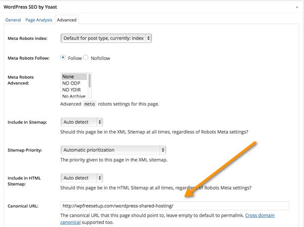WordPress Canonical Tag
