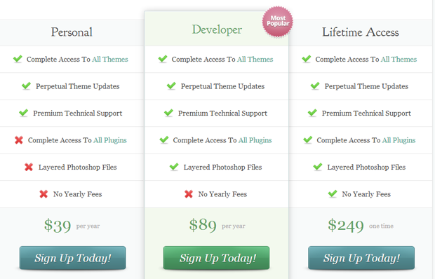 wordpress theme pricing