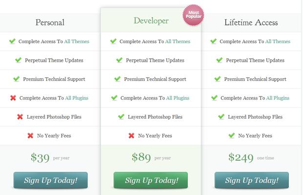 wordpress theme pricing