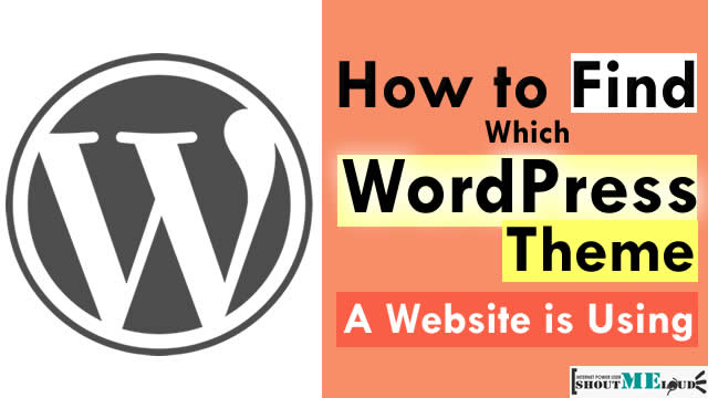 Which WordPress Theme