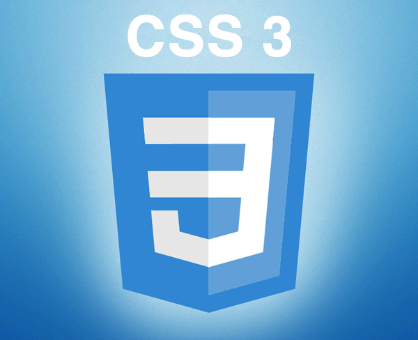 css3 logo What Programming Language Skills You Require For Blogging?