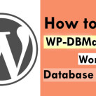 How To Use WP-DBManager WordPress Database Plugin
