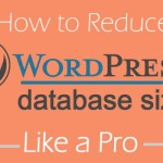 How To Reduce WordPressDatabase To Improve Blog Performance