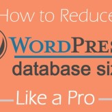 Reduce WordPress Database Size With These Proven Methods