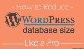 How To Reduce WordPressDatabase To Improve Blog Performance