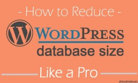 How To Reduce WordPress Database Size To Improve Blog Performance