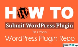 How To Submit Your First Plugin To WordPress Plugin Repository