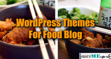 4 Best Food Recipes WordPress Themes To Make Your Blog Look Yummy!