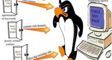 DoorWay Pages SEO Penalty – Return of Google Panda