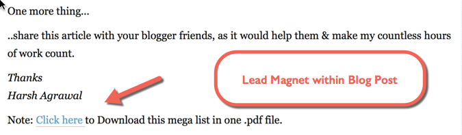 Lead Magnet Example