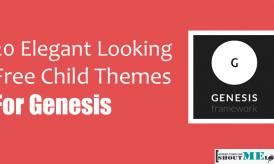 20 Elegant Looking Best Free Child Themes for Genesis
