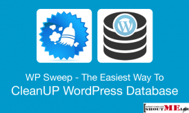 The Easiest Way To CleanUP WordPress Database- WP Sweep