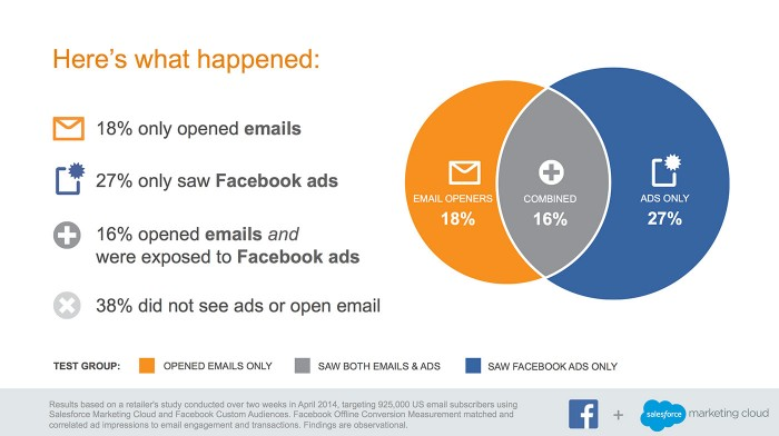 survey results retargeting campaign Facebook and email marketing