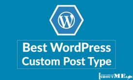 5 Best WordPress Custom Post Type You Should Know